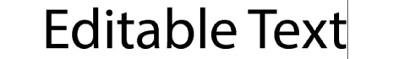 editabletext-400