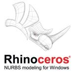 rhinoicon300