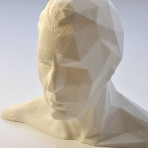 Mesh Reduction - Bust